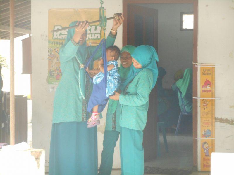 Kader Posyandu Desa Melikan sedang menimbang anak balita. (p.kus)